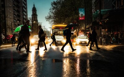 Cars and Pedestrians – Potential for Disaster